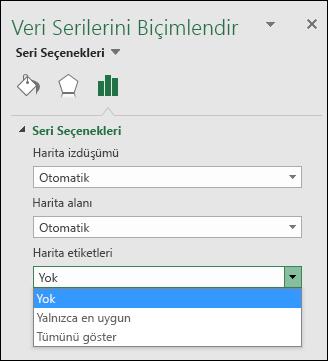 Excel harita grafiği Etiket Seçenekleri