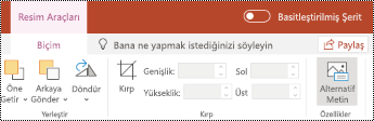 PowerPoint online 'da bir resmin şerit 'inde alternatif metin düğmesi.