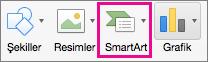 Kuruluş Şeması SmartArt'ı