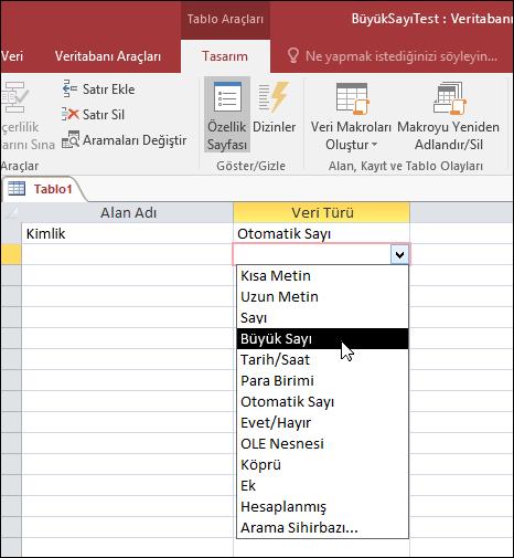 Access tablosundaki veri türleri listesinin ekran görüntüsü. Büyük Sayı seçilmiştir.
