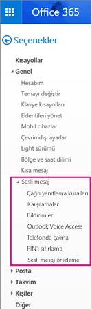 Outlook e-posta seçenekleri bölmesindeki sesli mesaj seçenekleri