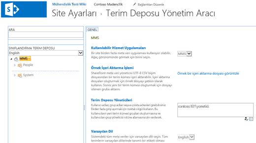 Terim Deposu Yönetim Aracı iletişim kutusu.