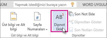 Word Online'da dip not ekleme