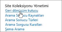 Site Koleksiyonu yönetim başlığı altında Geri Dönüştür vurgulanmış olarak Ayarlar