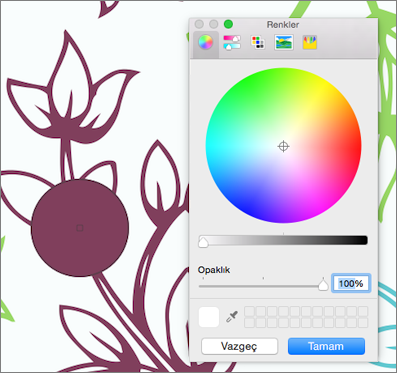 Renk önizleme