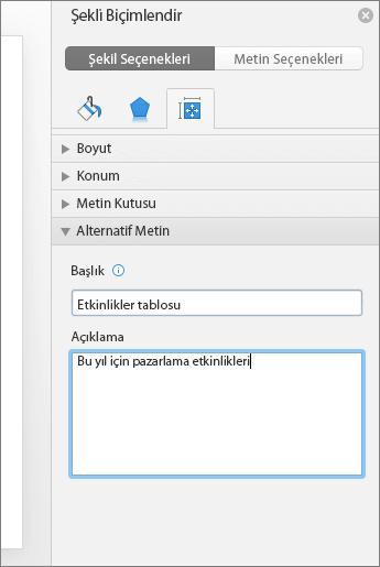 Şekil Biçimlendir bölmesinin Alternatif Metin kutularında seçili tablonun açıklandığı ekran görüntüsü