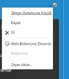 Web Bölümünü Düzenle seçmek için Web Bölümü menüsü