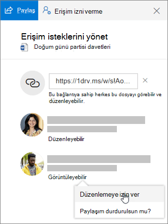Paylaşılan bir dosyanın Ayrıntılar bölmesindeki Paylaşım bölümünün ekran görüntüsü.