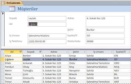 Access masaüstü veritabanındaki bir bölünmüş form