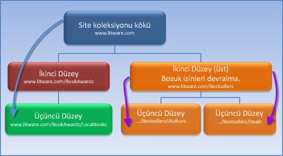 İzin devralmanın durdurulduğu site koleksiyonunun gösterildiği diyagram.