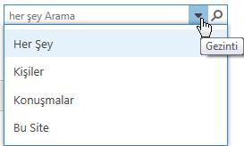 Arama kutusu ekran görüntüsü