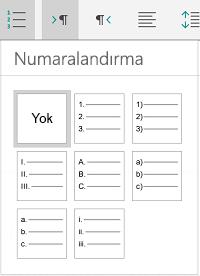 Numaralandırma seçenekleri