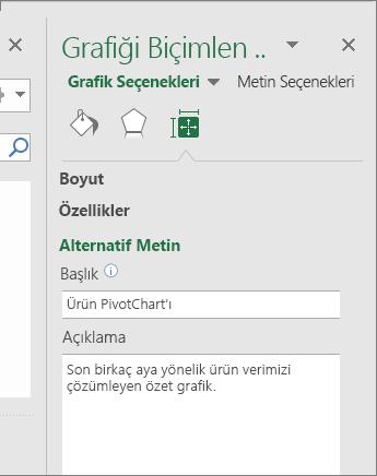 Grafik Alanını Biçimlendir bölmesinin Alternatif Metin alanında seçili PivotChart'ın açıklandığı ekran görüntüsü