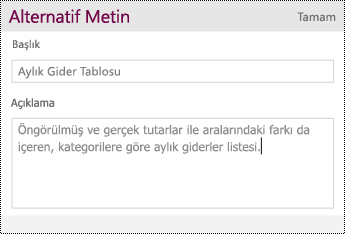 Tabloya alternatif metin ekleyin.