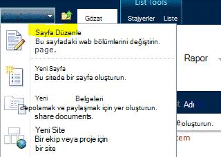 Site Eylemleri menüsünde Sayfayı Düzenle komutu