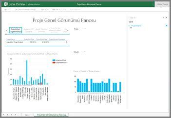 Projeye Genel Bakış Panosu çalışma kitabı, projelerinize yönelik üst düzey görev bilgilerini sunar
