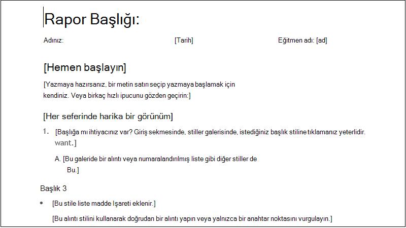 basit bir öğrenci raporunun ekran görüntüsü