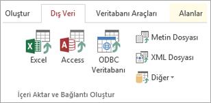 Access'in Dış Veri sekmesi