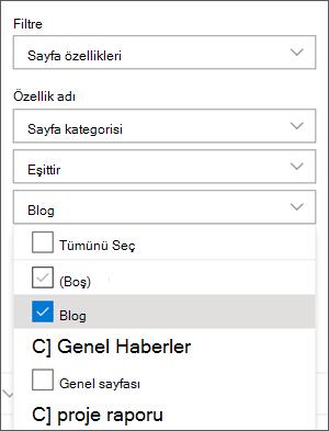Haber Web Bölümü bölmesinde blogları filtreleme ayarı