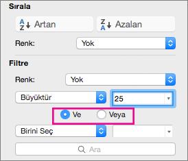 Filtre kutusunda, daha fazla ölçüt eklemek için Ve ya da Veya'yı seçin