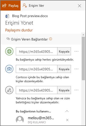Paylaşım bağlantılarının gösterildiği erişimi yönet panelinin ekran görüntüsü.
