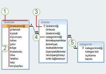 İlişkisel diyagramı