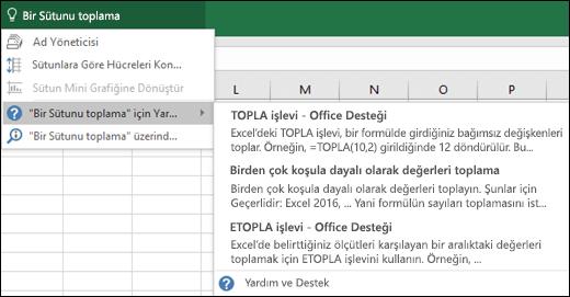 Excel'deki Göster kutusuna tıklayın ve ne yapmak istediğinizi yazın. Göster özelliği bu görevi gerçekleştirmenize yardımcı olmaya çalışır.