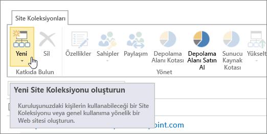 Yeni'nin seçili olduğu Site Koleksiyonu sayfası