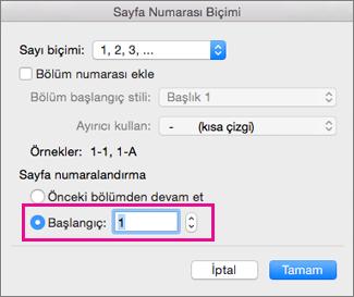 Sayfa Numarası biçim kutusunda Başlangıç = 1.
