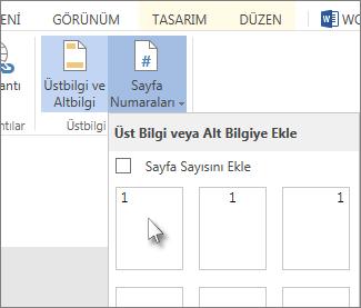 Üstbilgiye veya altbilgiye sayfa numaraları girmek için kullanılan kullanıcı arabiriminin resmi.