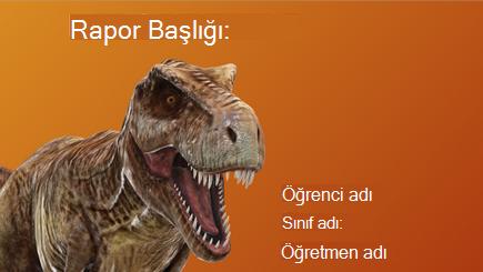 3D okul raporunun kavramsal görüntüsü