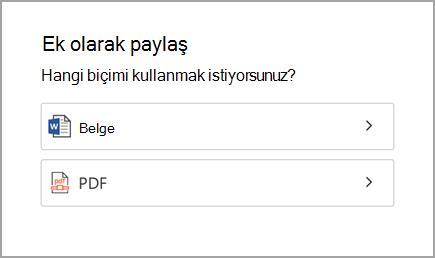 Belge veya PDF'ye
