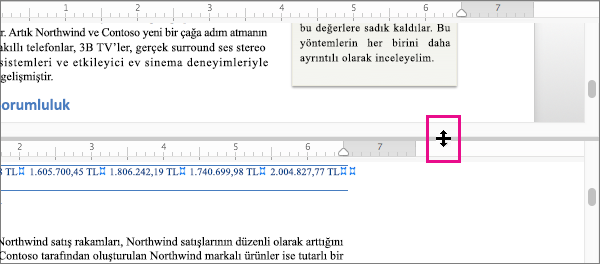 Aynı belgenin farklı bölümlerini veya farklı görünümleri görüntülemek için ekranı bölebilirsiniz.