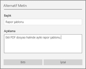 Windows 10 uygulaması için OneNote'ta ekli dosyalara alternatif metin ekleme