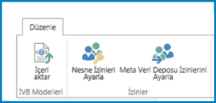 ivb modeli içeri aktar düğmesi ve izin ayarlarını gösteren iş bağlantısı ayarları'ndaki düzenle şeridinin ekran görüntüsü.