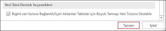Access seçenekleri arasında seçilmiş olan bağlanan/içeri aktarılan tablolar için büyük sayı (BigInt) veri türü desteği seçeneğinin ekran görüntüsü.