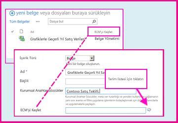Yönetilen meta veri sütunu, kullanıcıların belge özelliklerini kullanarak sütuna değer girmek için önceden tanımlanmış değerler arasından seçim yapabilmelerini sağlar.