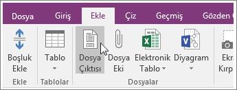 OneNote 2016'da Dosya Çıktısı düğmesinin ekran görüntüsü
