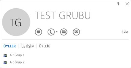 Test Grubu adlı grubun Outlook kişi kartının Üyeler sekmesinin ekran görüntüsü. Alt Grup 1 ve Alt Grup 2, üyeler olarak gösterilir.
