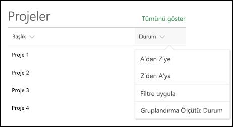 Liste web bölümü sıralama, filtre ve Grup menüsü