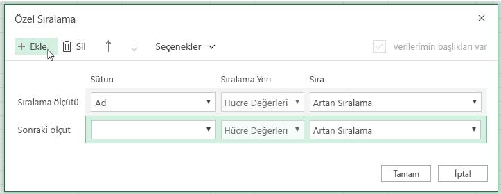 'Ekle' düğmesine tıklanmasının ardından, 'Sonra' öğesinin yanındaki listede başka bir sıralama düzeyi gösterilir