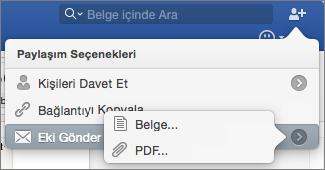 Göndereceğiniz dosyanın biçimini Word belgesi veya PDF olarak seçin.