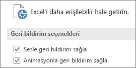 Excel'in Erişim Kolaylığı ayarlarının kısmi görünümü