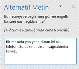 Windows için Outlook 'ta alternatif metin bölmesi.