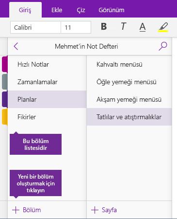 OneNote'ta Bölüm Ekle düğmesinin ekran görüntüsü