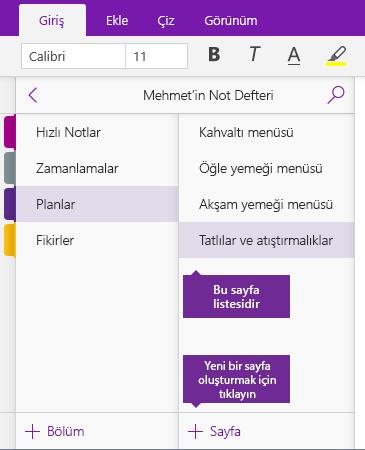 OneNote'ta Sayfa Ekle düğmesinin ekran görüntüsü