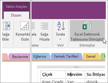 OneNote 2016'daki Excel Elektronik Tablosuna Dönüştür düğmesinin ekran görüntüsü.