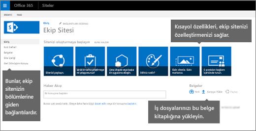 İlk Ekip siteleri sayfası, genellikle sitenizi özelleştirmek için kullanılan özelliklere ait kutucukları içerir.