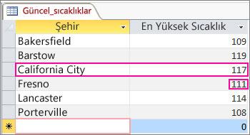 Access tablosunda güncelleştirilmiş veriler
