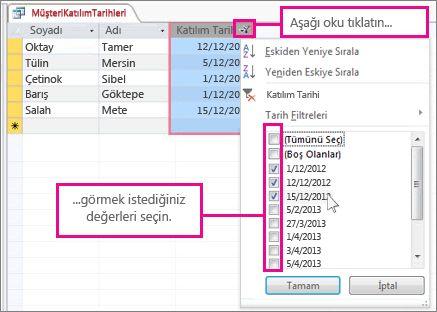 Masaüstü veritabanında sorgu sütununu filtreleme